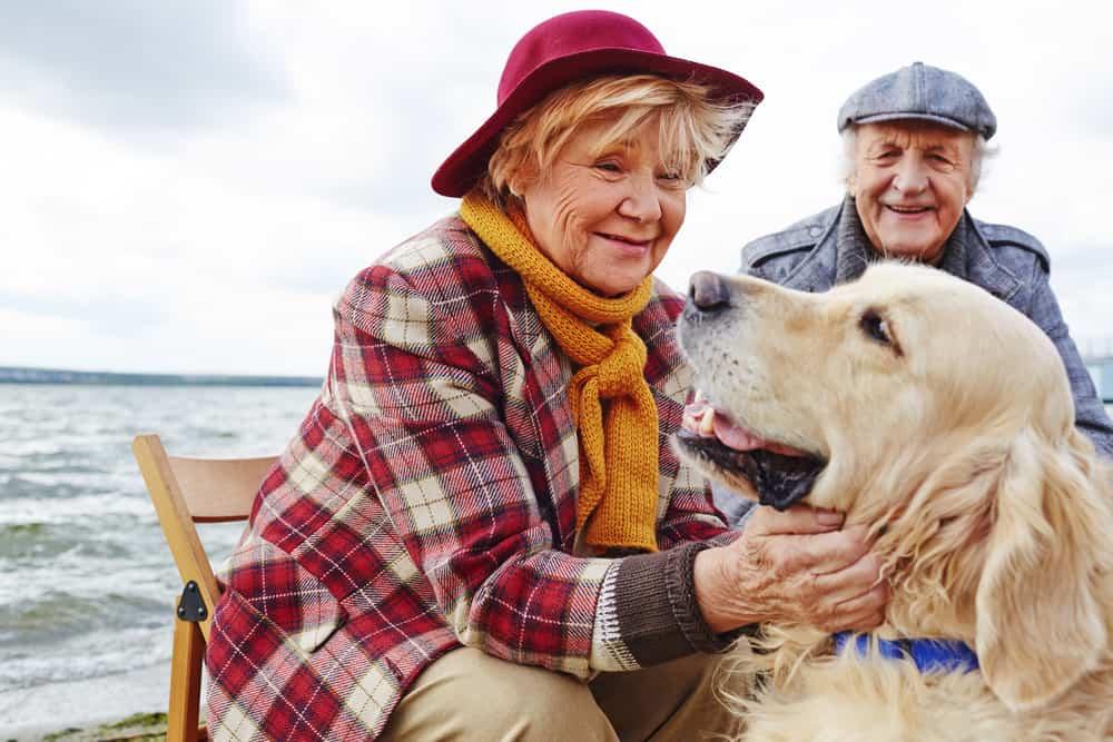 pet seniors health