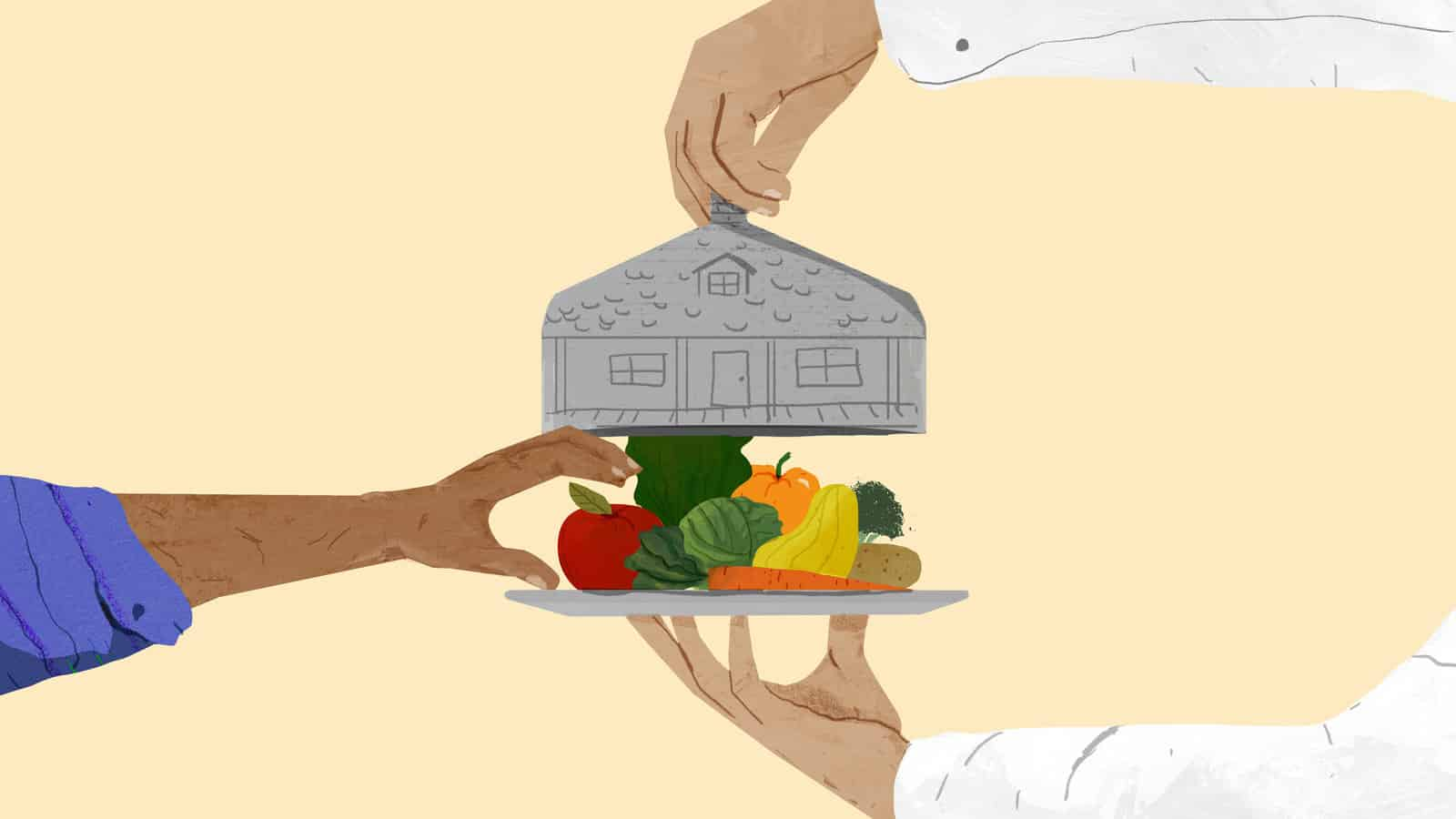 Chefs of Seniors hands holding plate of fruits and vegetables