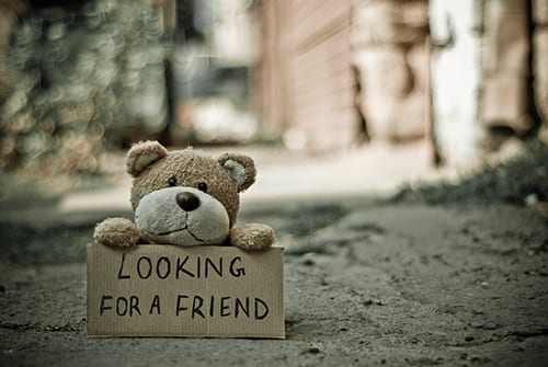 (credit Marina Shatskih) teddy bear looking for friend