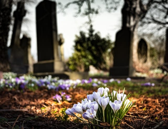 credit pixabay graveyard and flowers honor dead